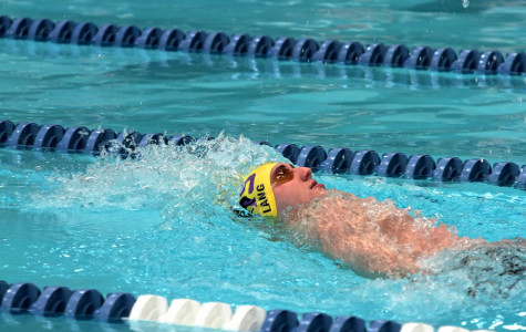 Swimmers dive into state meet looking for gold